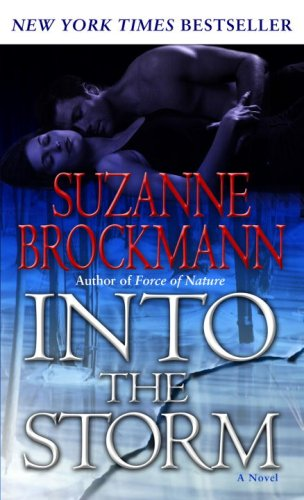 Image for Into the Storm: A Novel